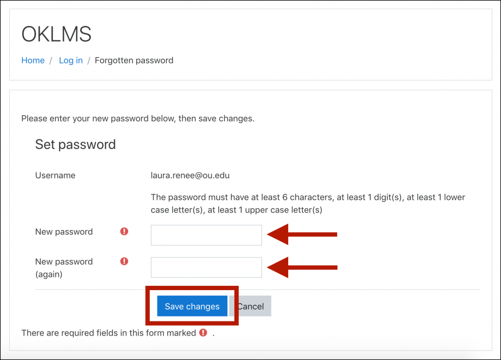 "OKLMS Set Password window, with arrows indicating the ""New password"" and ""New password (again) fields, and with the ""Save changes"" button highlighted"